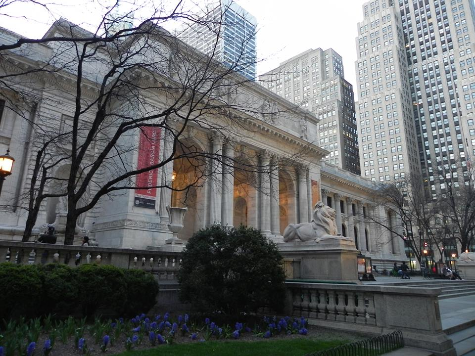 new york library - 5 giorni a new york
